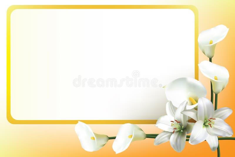 Gru?karte mit Lilien und Callalilien lizenzfreie abbildung