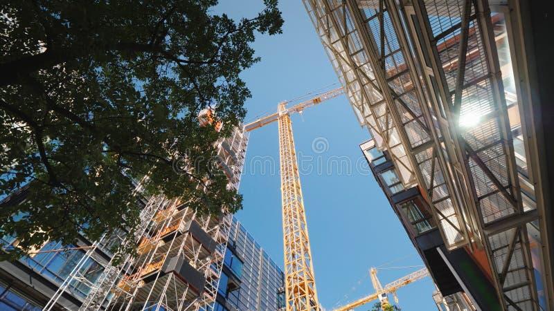 Gru a torre nel distretto aziendale della città moderna Nelle finestre degli edifici per uffici il sole è riflesso basso immagine stock libera da diritti