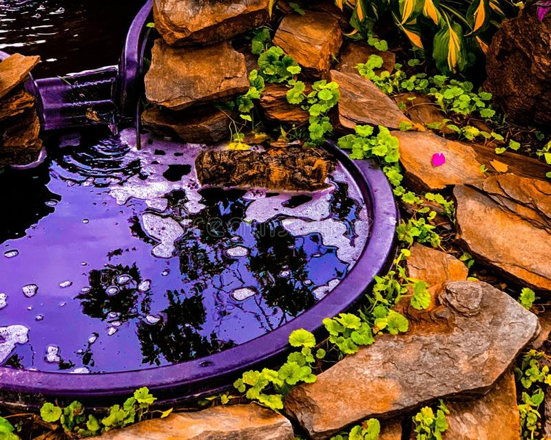 Grubbla för trädgård royaltyfri fotografi