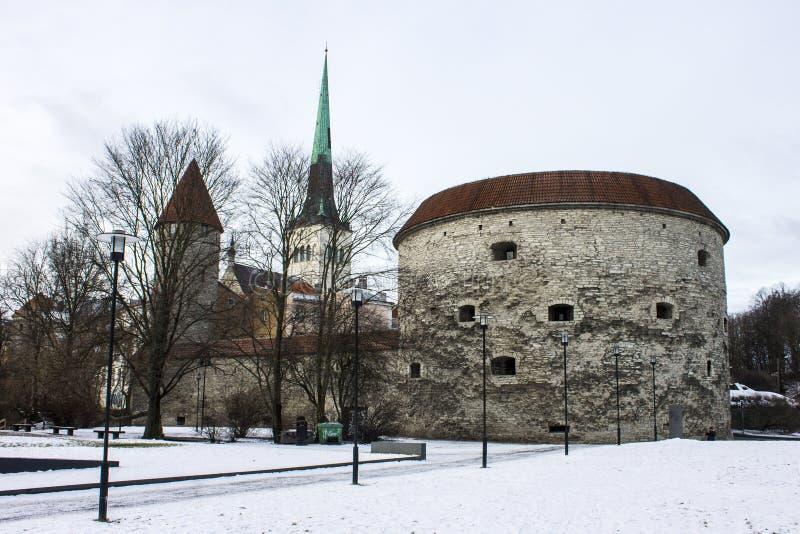 Gruby Margaret wierza, Tallinn, Estonia zdjęcia royalty free