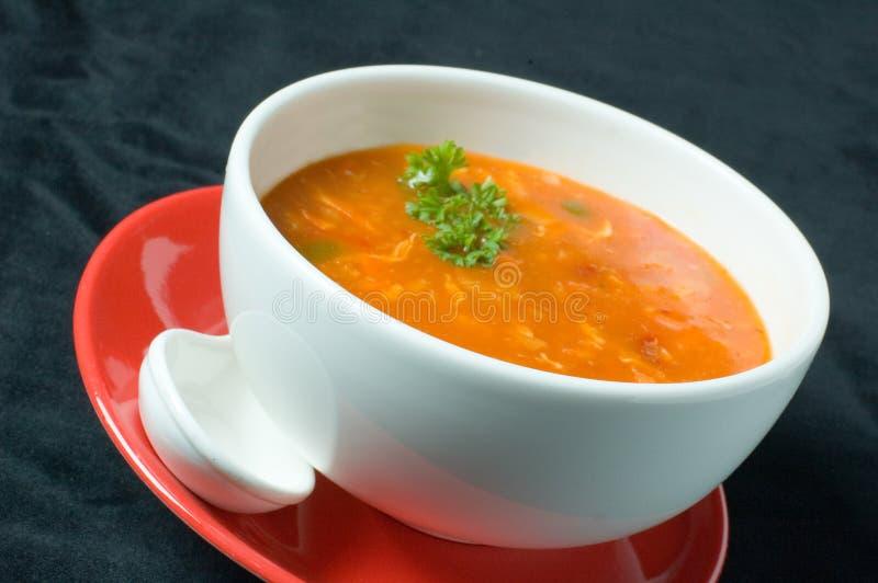 gruby rosyjski zupa zdjęcia royalty free