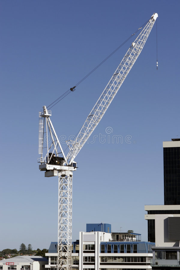 Grue images stock