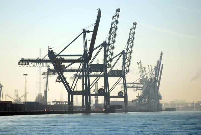 Grues dans le port d'Anvers photo stock