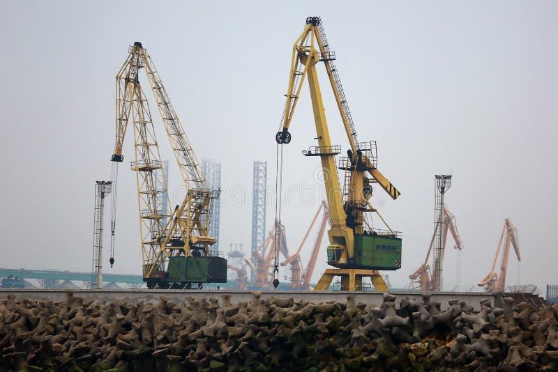 Grues de chantier naval photographie stock libre de droits