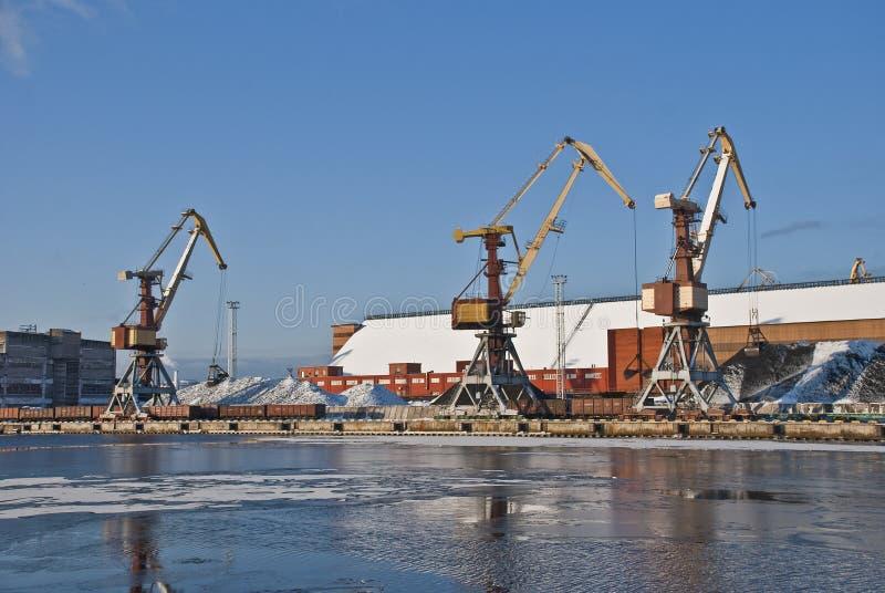 Grues de port photo stock