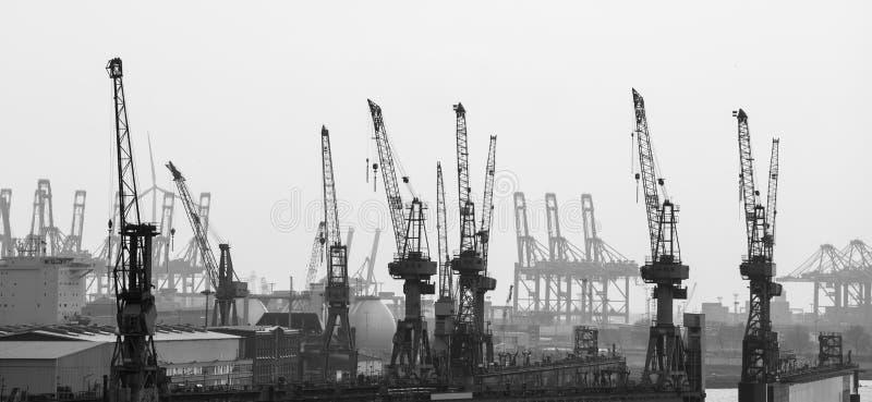 Grues de port de Hambourg en noir et blanc images stock
