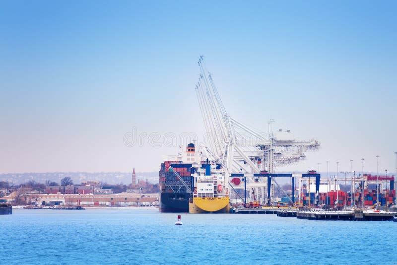 Grues marines chargeant des conteneurs sur le cargo photographie stock libre de droits