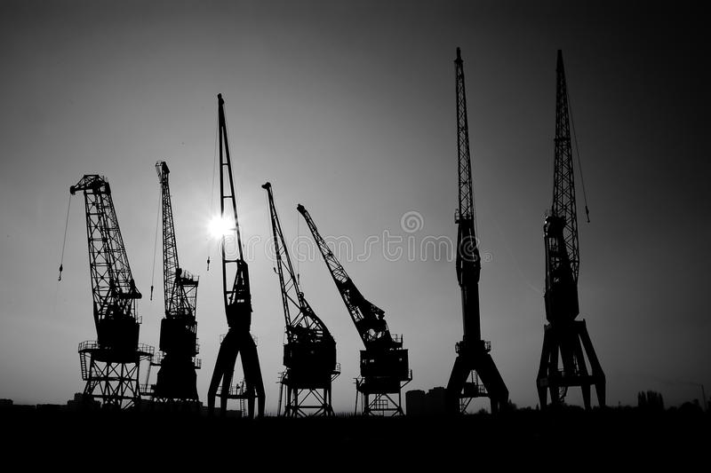 Grues silhouettées dans le port photographie stock libre de droits