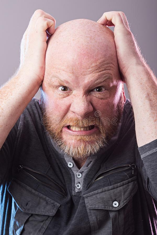Grumpy bald man. Bald man with beard with angry expression on his face stock images