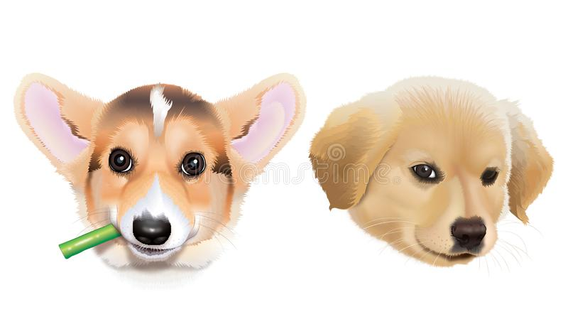 Grumpy-puppies that are so cute. Unhappy puppies but still so cute and adorable, grumpy but lovable stock illustration