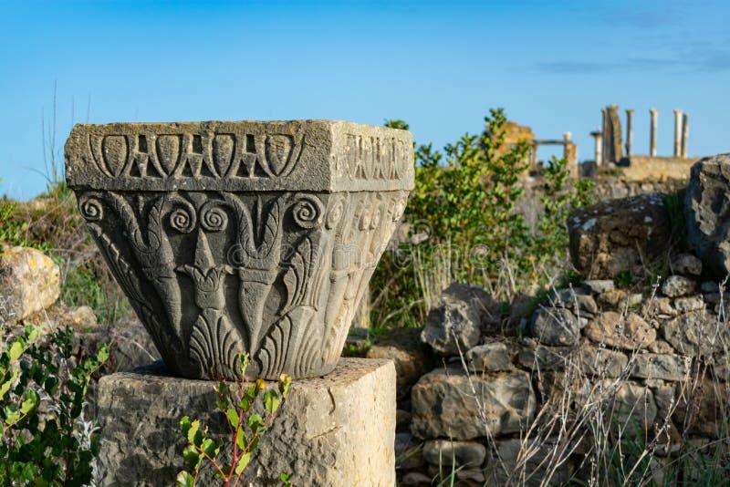Grund av en förstörd pelare på Roman Ruins av Volubilis i Marocko royaltyfria foton