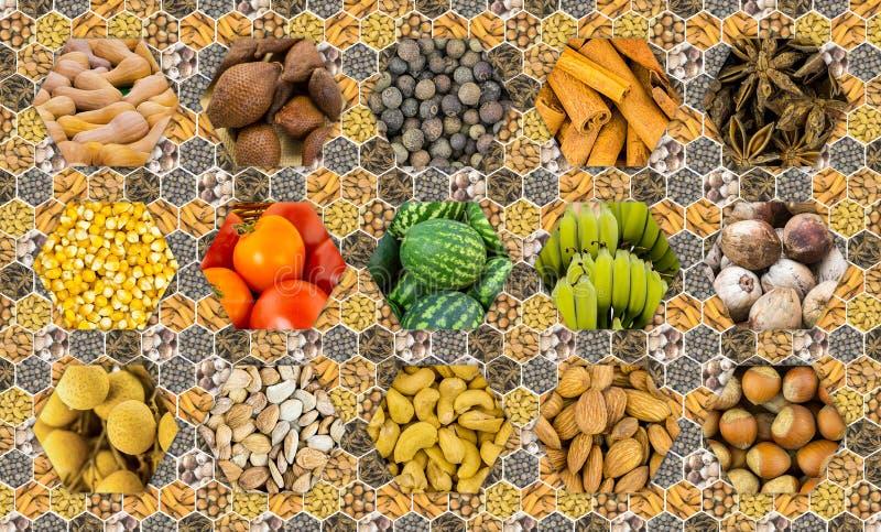 Grund för peppar för kryddor för havre för tomat för grönsaker för hasselnöt för mandel för kasjuer för litchiplommon för vattenm royaltyfria foton