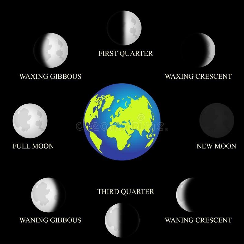Grundläggande faser av månen royaltyfri illustrationer