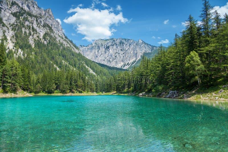 Gruner ser med kristallklart vatten i Österrike arkivfoto