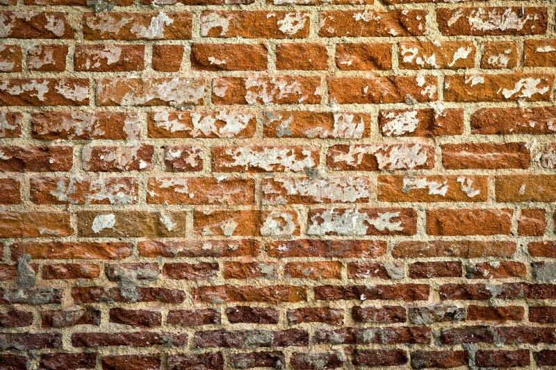 Grunge砖墙 免版税库存照片