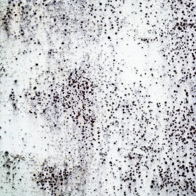 Grunge纹理 免版税库存图片