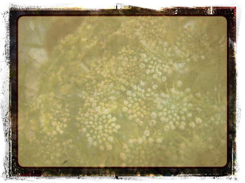 Grunge葡萄酒照片框架 免版税库存照片