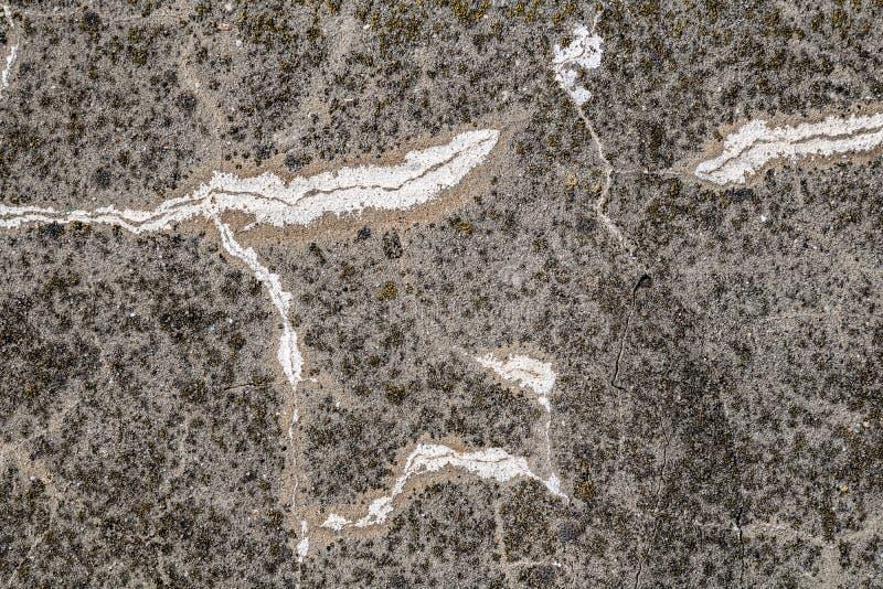 Grunge åldrades sprucken betongväggyttersidatextur i fattigt villkor arkivbild