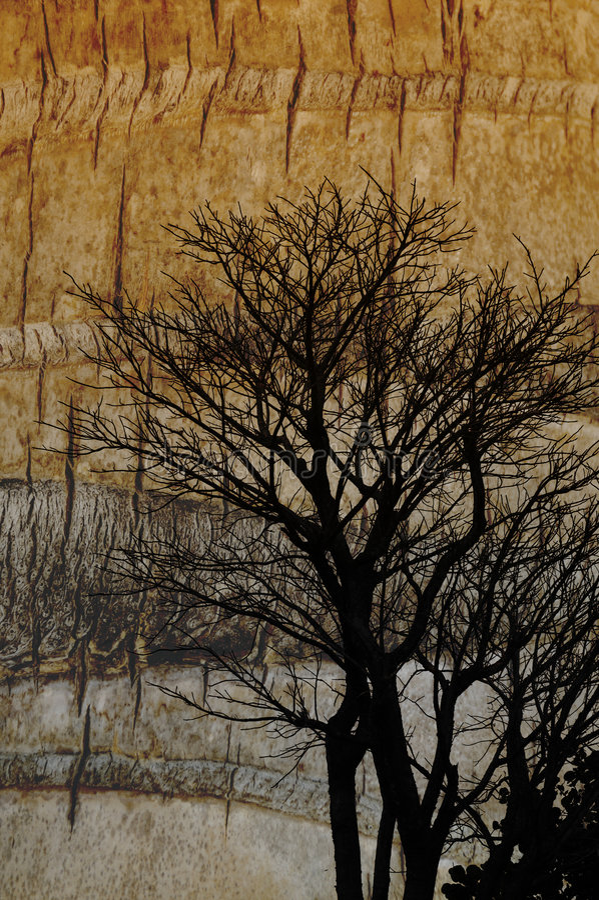 grunge δέντρα στοκ εικόνα