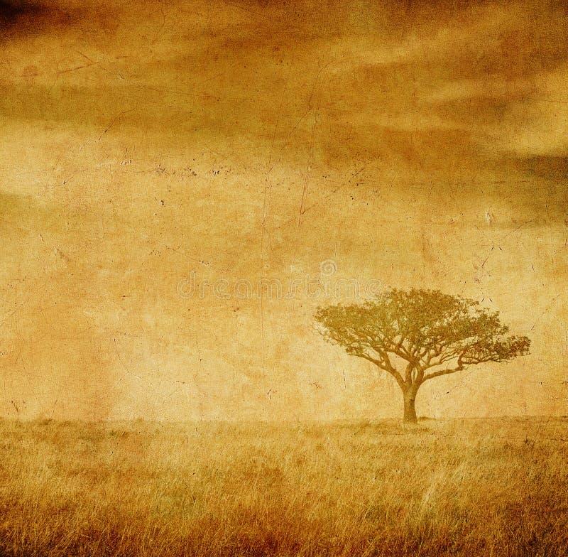 grunge τρύγος δέντρων εγγράφου  στοκ εικόνα με δικαίωμα ελεύθερης χρήσης