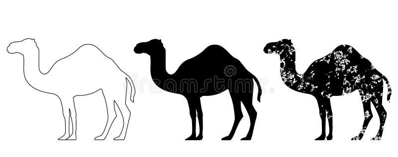 Grunge верблюда установленный черный белый иллюстрация вектора
