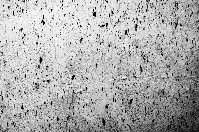 Grunge панели стены белый, светлый - серая конкретная предпосылка Фон грязный, стена пыли серая конкретная, текстура классн класс стоковая фотография