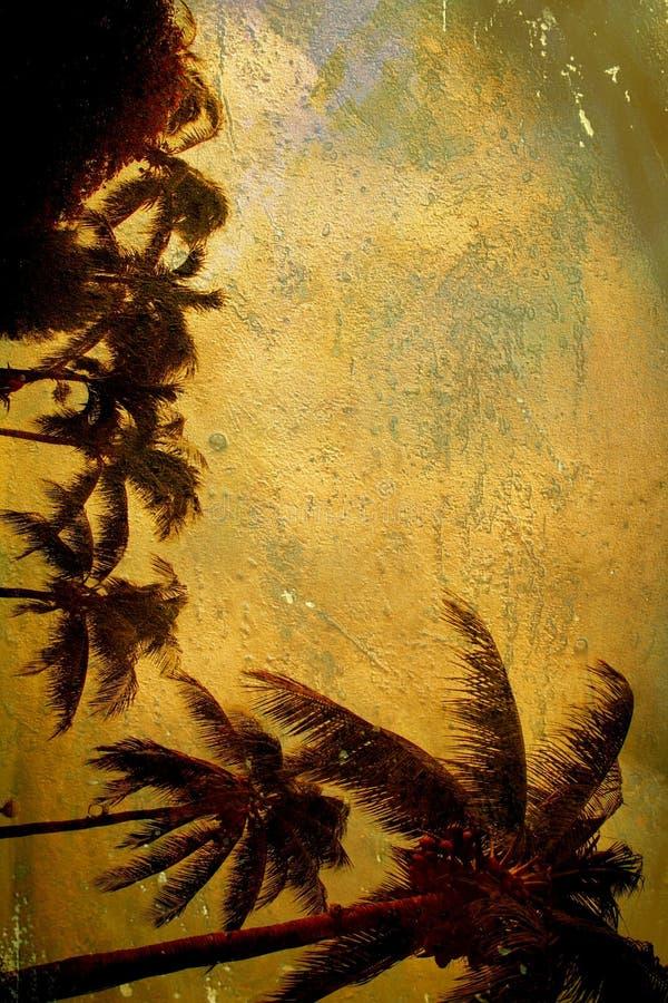 grunge тропическое стоковое изображение