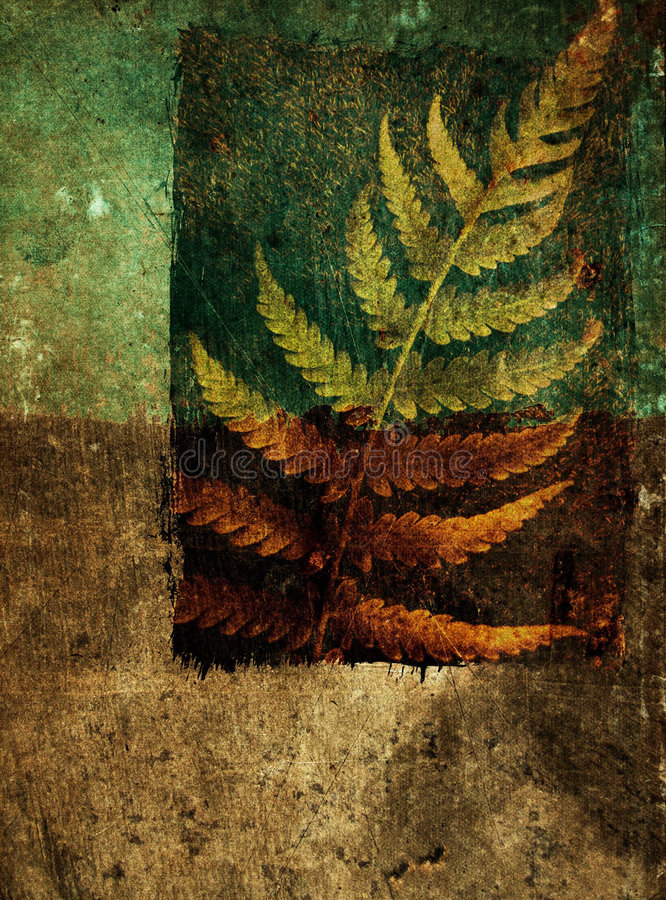 Grunge abstract background with fern leaf stock images