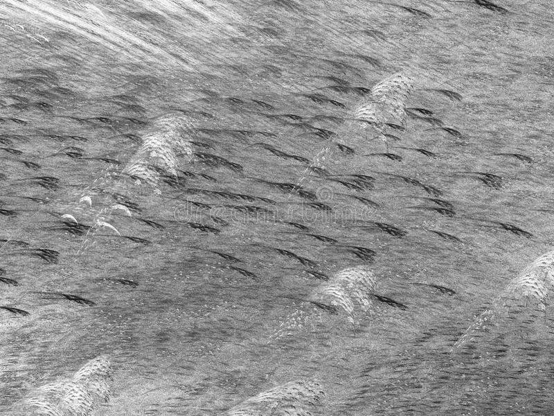 Grunge abstrakcjonistyczny czarny tło zdjęcia stock