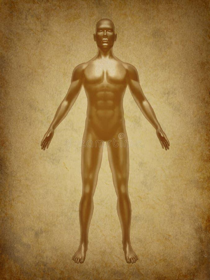 Grunge antiguo del símbolo del cuerpo humano ilustración del vector