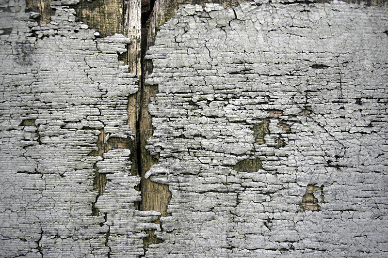 Download Grunge background stock photo. Image of ruined, wall - 14425836