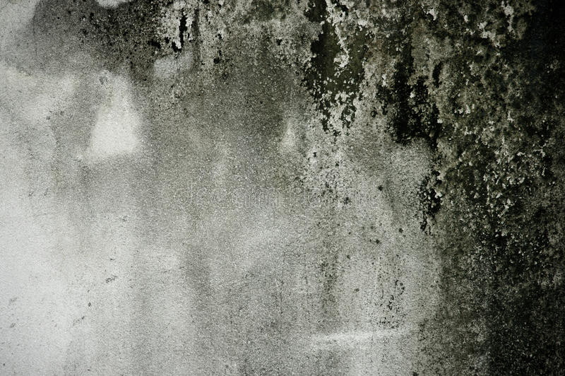 Download Grunge background stock photo. Image of concrete, horror - 23228226