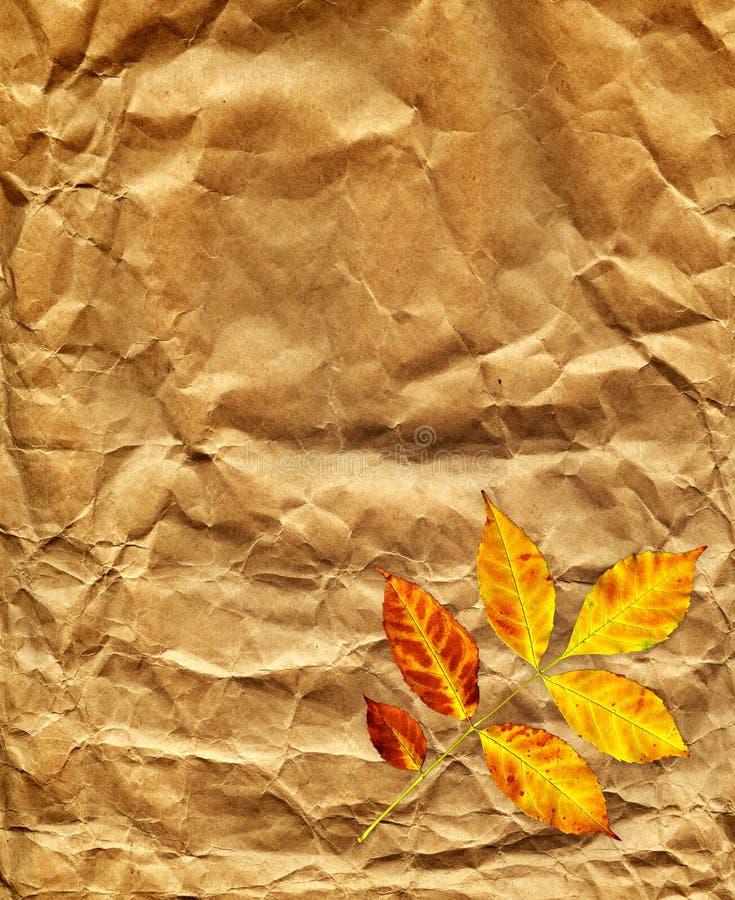 Download Grunge background stock illustration. Illustration of leaf - 26629617