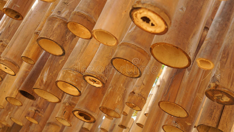 Grunge bamboo decoration stock image