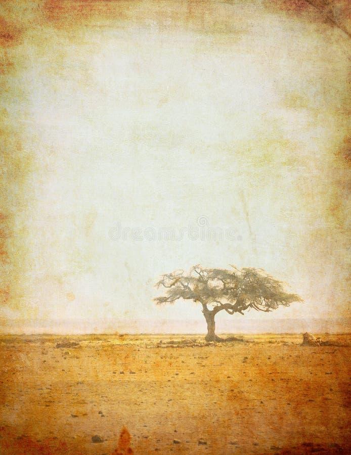 Grunge bild av en tree på ett tappningpapper royaltyfri fotografi