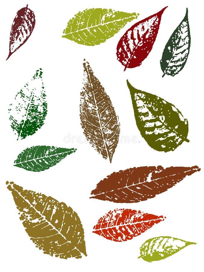 Grunge Blätter stock abbildung