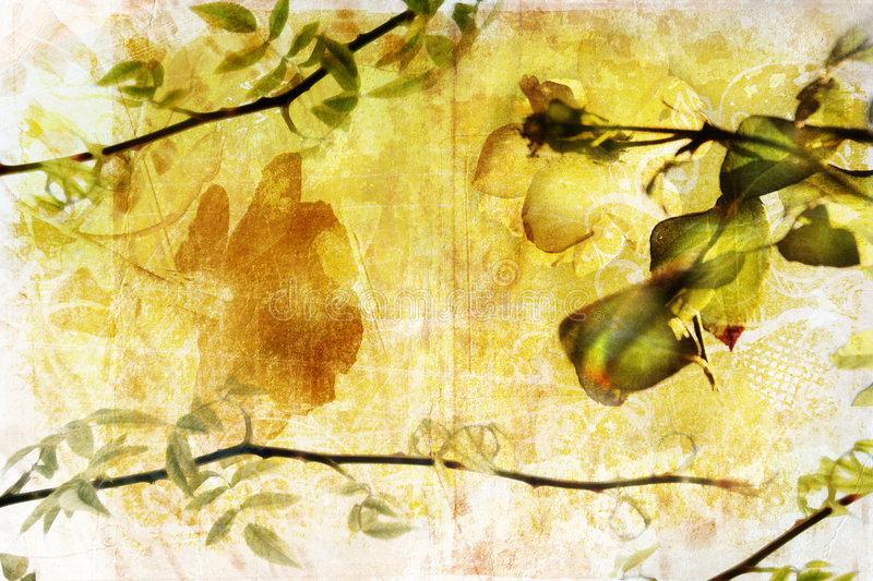 Grunge branch background page stock image