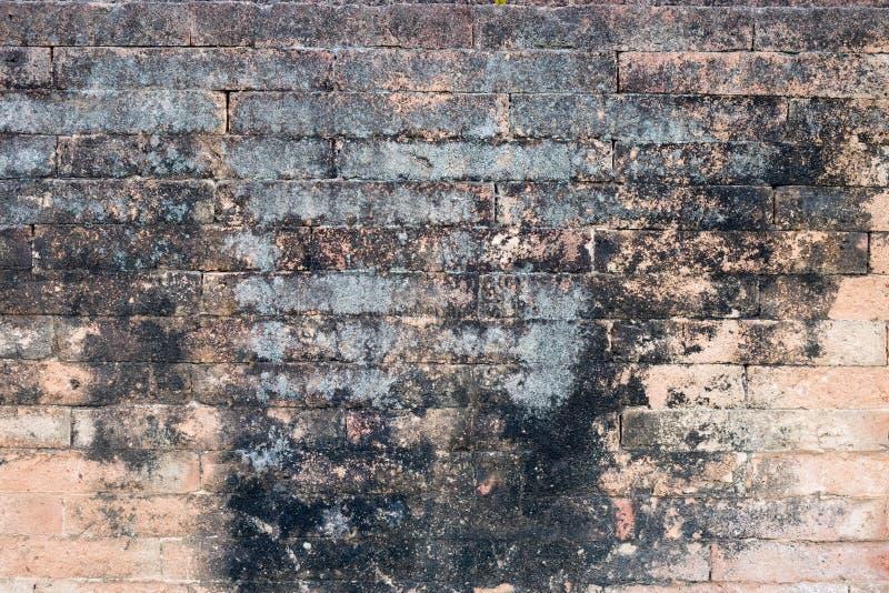 Brick wall stone background textures. Grunge brick wall stone background textures royalty free stock photo