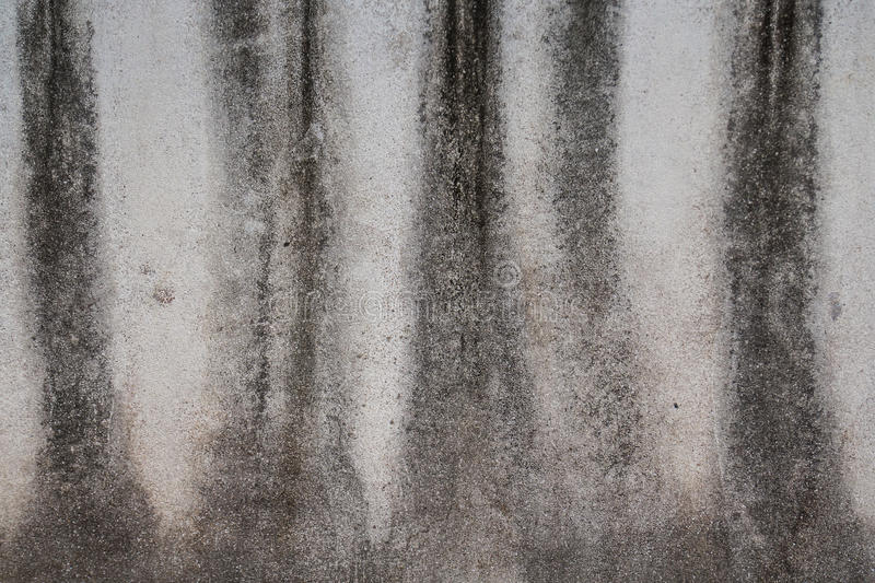 Grunge Cement Texture Surface stock photo