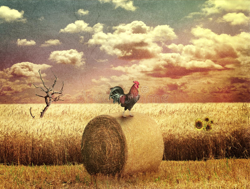 Grunge Country Landscape royalty free stock image