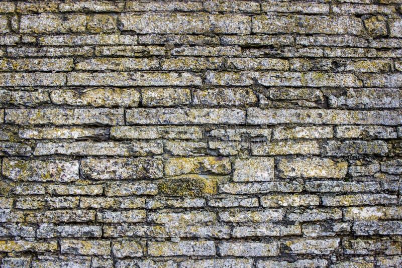Grunge de texture de mur de briques photos libres de droits