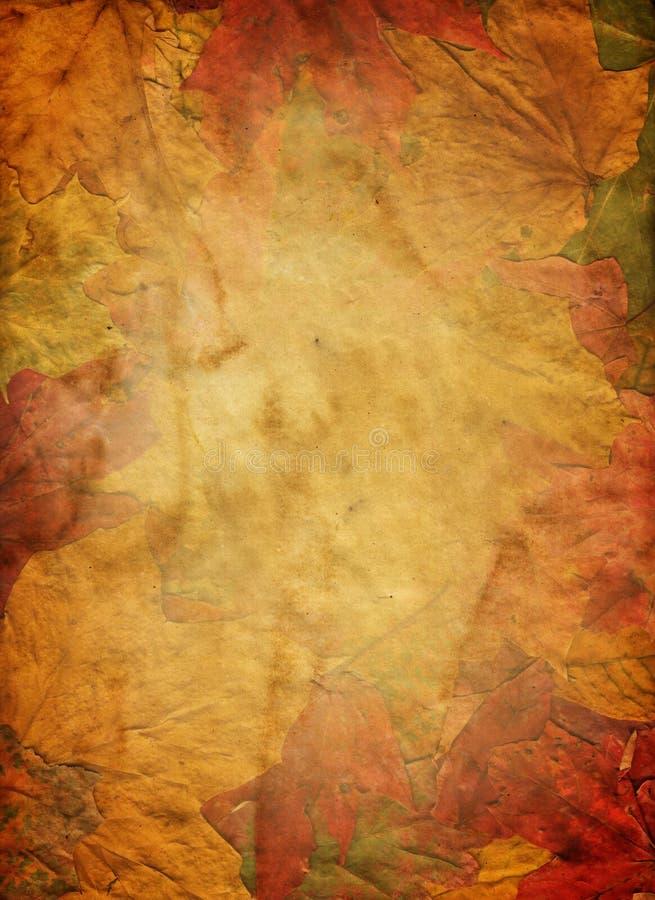 Grunge del otoño foto de archivo libre de regalías