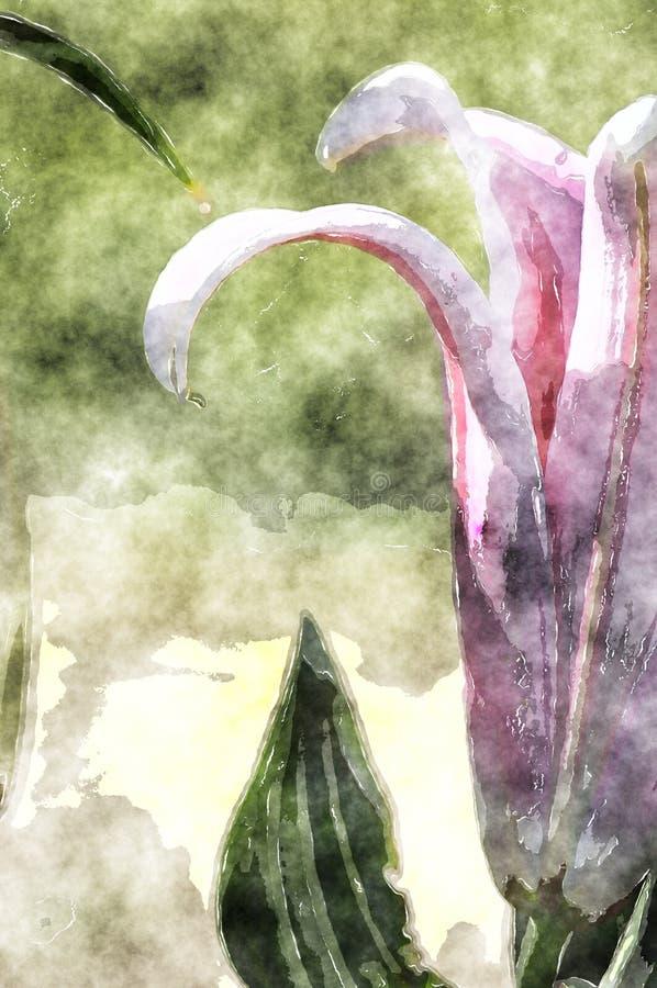 Grunge Duabs Lily Flower pintada artesão ilustração do vetor