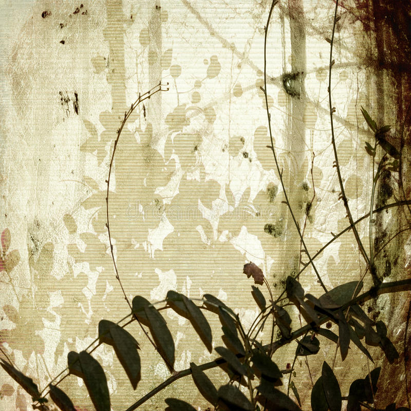 Grunge enredó ramificaciones en el papel de bambú antiguo imágenes de archivo libres de regalías