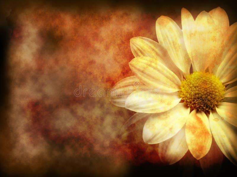 Grunge florale foncée illustration stock