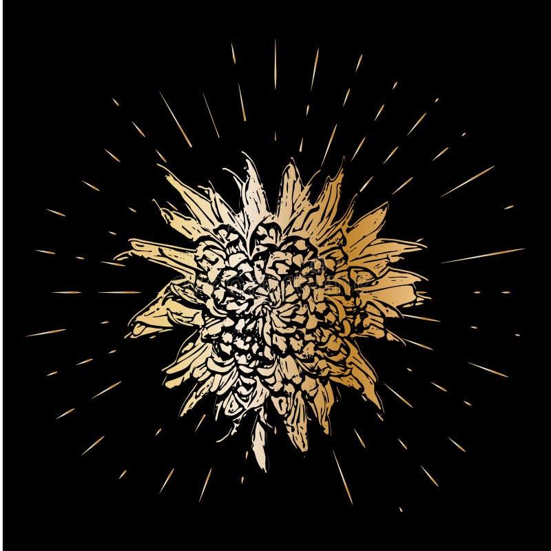 Grunge golden chrysanthemum flower with burst on a black background . Vector illustration for postcards, calendars stock illustration