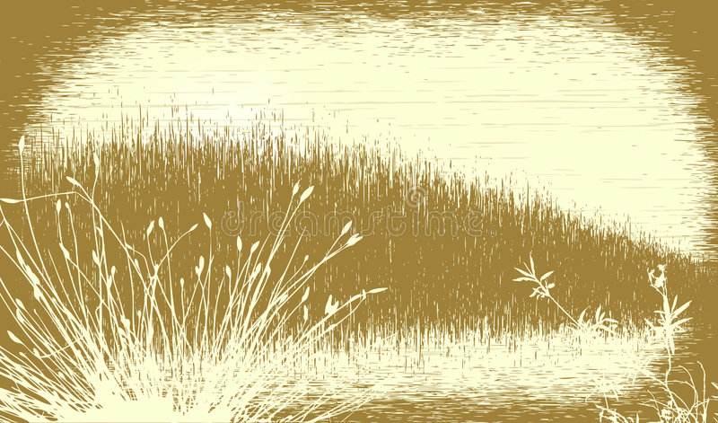Grunge gramíneo ilustração royalty free