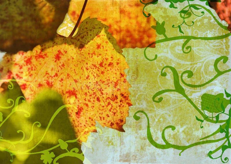 Download Grunge grape vine leaf stock illustration. Image of burnt - 2767985