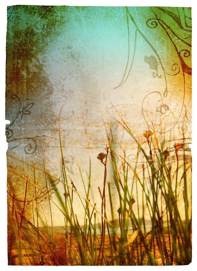 Grunge grass royalty free illustration