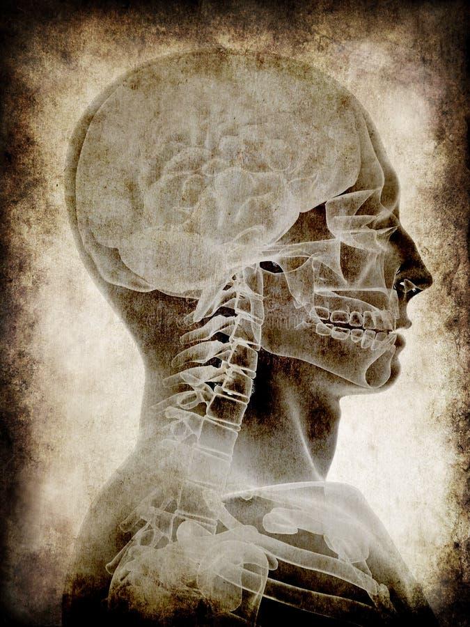 Grunge head stock illustration